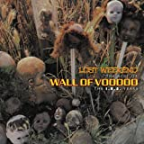 Songtexte von Wall of Voodoo - Lost Weekend, the Best of Wall of Voodoo (The I.R.S. Years)
