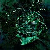 Songtexte von Nachtmystium - Instinct: Decay
