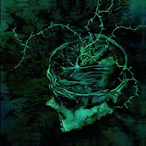 Instinct: Decay