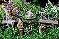 Pretmanns Feengarten-Starterset & Zubehör–Miniatur-Feenfiguren Bella und Freunde (14-teilig) von Pretmanns auf Du und dein Garten