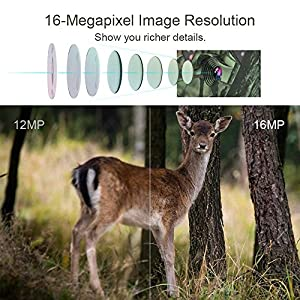 THZY Trail Camera, Waterproof 16MP 1080P HD Game Hunting Camera with Sound 120° Wide Angle Lens 38 Pcs 940nm IR LEDs No Glow Black Infrared Night Version 0.5s Trigger Speed up to 20M/65FT for Hunting