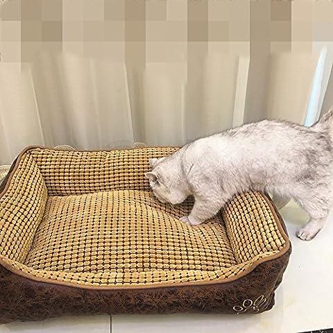 KAI-Petit chien grand chien n