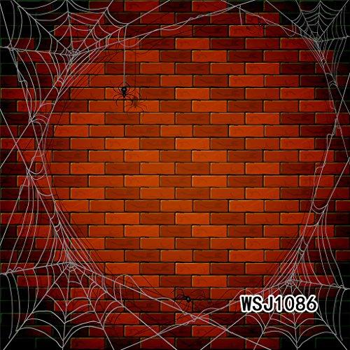 LB 300X300cm Vinyl Hintergründe | Rote Ziegelmauer mit Spinnennetz Thema | Professionelle Studio Fotografie Hintergrund Für Paty / Bühne Dekor (Spinnennetz Dekor)