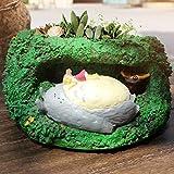 MEIDI Home Inicio Creativo Mi Vecino Totoro Cueva Suculenta Maceta de Resina Artesanía Decoración Gran Planta en Maceta