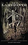 The Labyrinth (Nightfall Gardens Book 3)