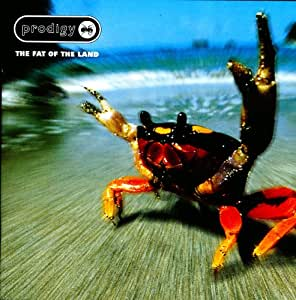 The Fat Of The Land Vinyl Lp The Prodigy Amazon De Musik