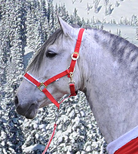 HKM 39143012.0651 Nylonhalfter -Christmas- Warmblut, rot/weiß
