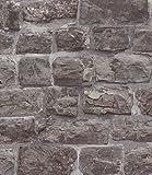 Stein Ziegelstein Verblender Vliestapete Mauer
