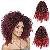 2 Pack 8 inch 120gram Afro Kinky Curly Mali Bob Crochet Braids Twist Braiding Marley Braid Synthetic Hair Extensions (8