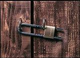 MASTER LOCK Messing Vorhängeschloss 50mm Bügel - 2