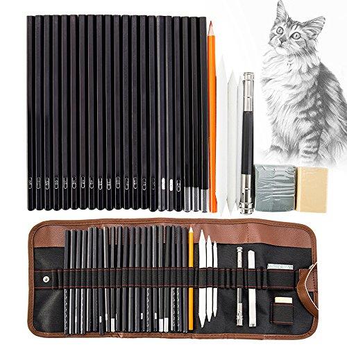 30 teilig Skizzierstifte Set Zeichenstift Set Bleistifte Set Skizzieren und Zeichnen Professionelle Art Set mit Graphitkohlestifte Sticks Werkzeuge und Aufbewahrungstasche