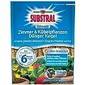 Substral Osmocote Zimmer & Kübelpflanzen Dünger Kegel - 25 Stück von Celaflor auf Du und dein Garten
