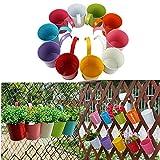 Capalta Fiore 10 Pezzi Vaso per Fiori da Balcone Vaso sospeso vasi per Fiori da Appendere Balcone Giardino vasi da Parete Vaso in Metallo vaschetta per Fiori
