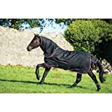 Amigo Hero 6 Plus Medium Turnout Rug 145cm Black