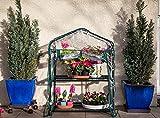Serre de jardin, balcon, terrasse – Structure acier vert housse PVC transparente imperméable – Mini serre transportable 2 étagères L69*P49*H95 cm – Interouge