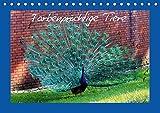 Farbenprächtige Tiere (Tischkalender 2017 DIN A5 quer): aller Arten (Monatskalender, 14 Seiten ) (CALVENDO Tiere)