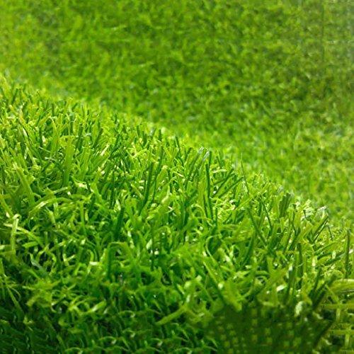 WENZHE Erba sintetica Erba Sintetica Tappeto Erba Finta Manto Giardino Alta Densità A Buon Mercato, Spessore 10 / 20mm, 2 Metri Di Larghezza, 5 Formati ( Colore : A-10mm , dimensioni : 1*1m )