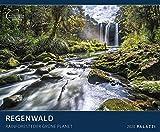 Regenwald 2020: Der Grüne Planet