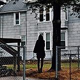 Dark Bird Is Home (Colored Vinyl) [Vinyl LP] [Vinilo]