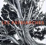 Les patriarches