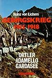 Scarica Libro Gebirgskrieg 1915 1918 (PDF,EPUB,MOBI) Online Italiano Gratis