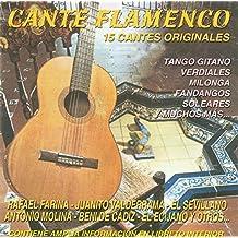 Cante Flamenco 1 - 15 Cantes Flamencos: Tangos, Verdiales, Milongas, Fandangos, Soleares, Bulerías,…