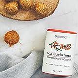 Bio Sanddorn Pulver 35g – Roh – Super Beere Reich an Omega 7 und Vitamin E - 4