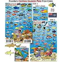 Mini Cayman Islands Reef Creatures Fish ID for Scuba Divers and Snorkelers