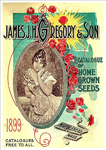 james-jhgregory-son-catalogue-of-home-grown-seeds-1899-a4-glossy-art-print-taken-from-a-beautifully-