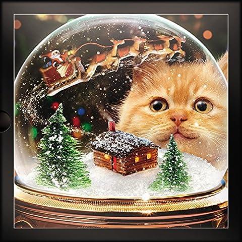 Weihnachten Karten (gbcc1445) Katze und Schneekugel–Box von 16Karten–1Design (Katze Weihnachtskarten)