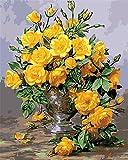 CaptainCrafts New Malen nach Zahlen 16x20 'für Erwachsene, K0inder Leinwand - Hunderttausend Jiao Mei, schöne gelbe Blumen (Mit Rahmen)