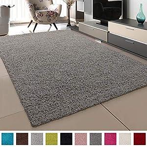 SANAT Teppich Wohnzimmer - Hellgrau Hochflor Langflor Teppiche Modern, Größe: 80x150 cm