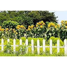 Cassisy 3x2m Vinilo Primavera Telon de Fondo Jardín Valla de Madera Blanca Campo de Hierba Verde