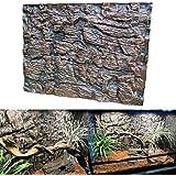 KING DO WAY Lot De 2 Pcs 3D Fond Arrière En Mousse Décors Pour Fond D'aquarium Décoration DIY Reptile Aquarium Background Brun 60cmX45cmX3cm