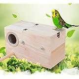 HOMYY en Bois Nichoir Oiseau Cage Maison Bois Jardin Oiseau Alimentation Maison Naturel Perruche Boite Nid Calopsitte Élégant