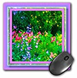 Susan Brown Designs Flower Themes - Flowers in a Field - MousePad (mp_24136_1)