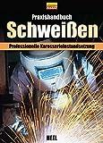 Praxishandbuch Schweißen: Professionelle Karosserieinstandsetzung -