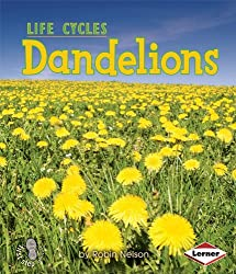 Dandelions (First Step Nonfiction (Paperback)) by Robin Nelson (2008-09-01)