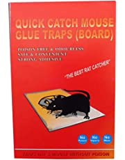 Mice Insect Rodent Lizard Trap Rat Catcher Adhesive Sticky Glue Pad (Mouse Glue Pad) - Non Poisonous - Non Toxic - Odourless - Mouse Terminator