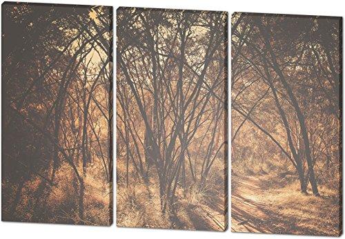 Im Wald, schönes und hochwertiges Leinwandbild zum Aufhängen in XXL - 3 Teiler mit 120cm x 80cm, echter Holzrahmen, effektiver Pigmentdruck, modernes Design für Ihr Büro oder Zimmer