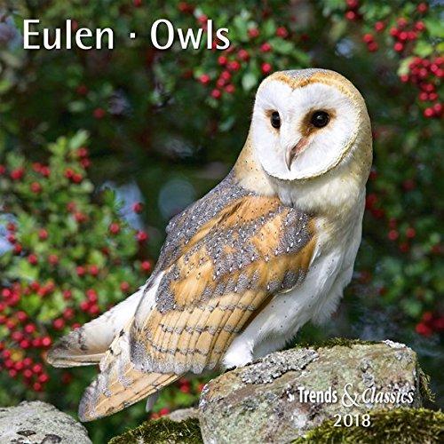 Eulen Owls 2018 - Broschürenkalender - Wandkalender - mit herausnehmbarem Poster - Format 30 x 30 cm