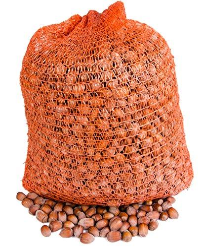 Haselnusse in der Schale 10 Kg aus Polen. Frisch.