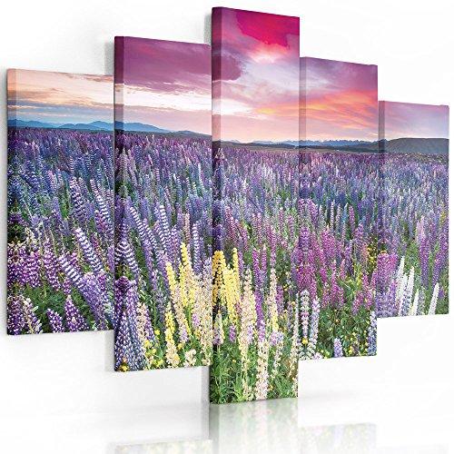 Feeby Frames, Cuadro en Lienzo - 5 Partes - Cuadro impresión, Cuadro decoración, Canvas (Prado con Las Flores,Violeta, Rosado) 100x150 cm, Tipo A