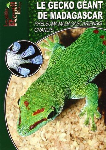 Le Gecko Géant de Madagascar: Phelsuma Madagascariensis Grandis