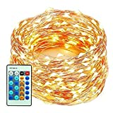 xtf2015 Outdoor LED String Lights Flexible Dimmable Copper Wire Lights 99ft/30m 300LEDs Waterproof Starry String Lights with Remote Control for Garden, Room, Wedding and Party , Warm White