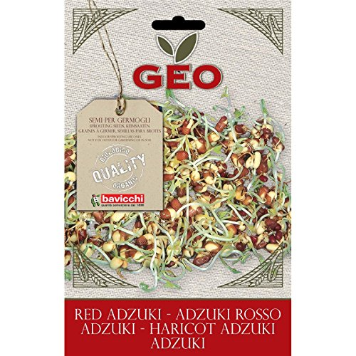 Geo ZFN0403 Adzuki Rosso Semi da Germoglio, Marrone - Amazon Semi