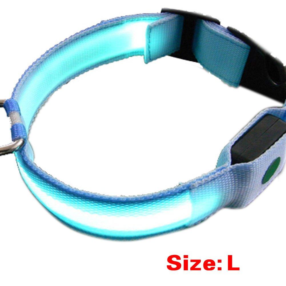 LED collare domestico - SODIAL(R) Collare Nuovo nylon LED Dog Night sicurezza lampeggiante fino con