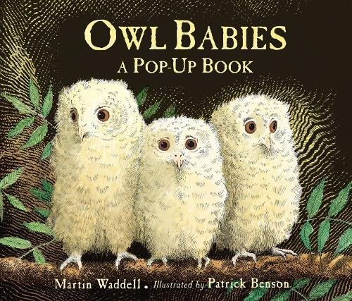 Owl Babies por Martin Waddell