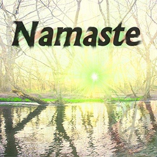 Namaste (feat. Steve Universal) [Explicit]