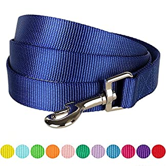 Blueberry Pet Classic Solid Dog Leads Made For Last, Matching Collar & Harness Available Separately 61eGfRQh6nL